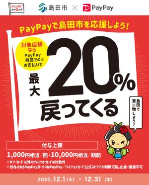 PayPay島田で最大20%戻ってくるもんで、買い物してごキャンペーン